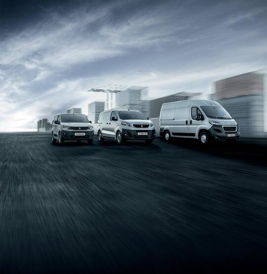 Peugeot varebil