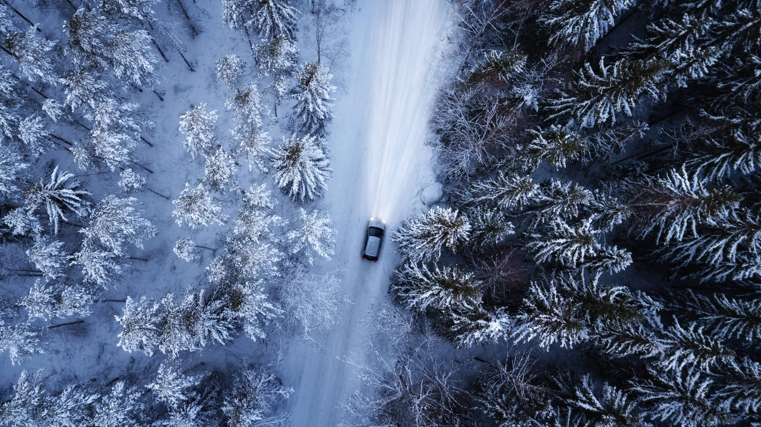 Vinterdekk